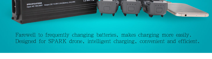Spark Parallel Charger